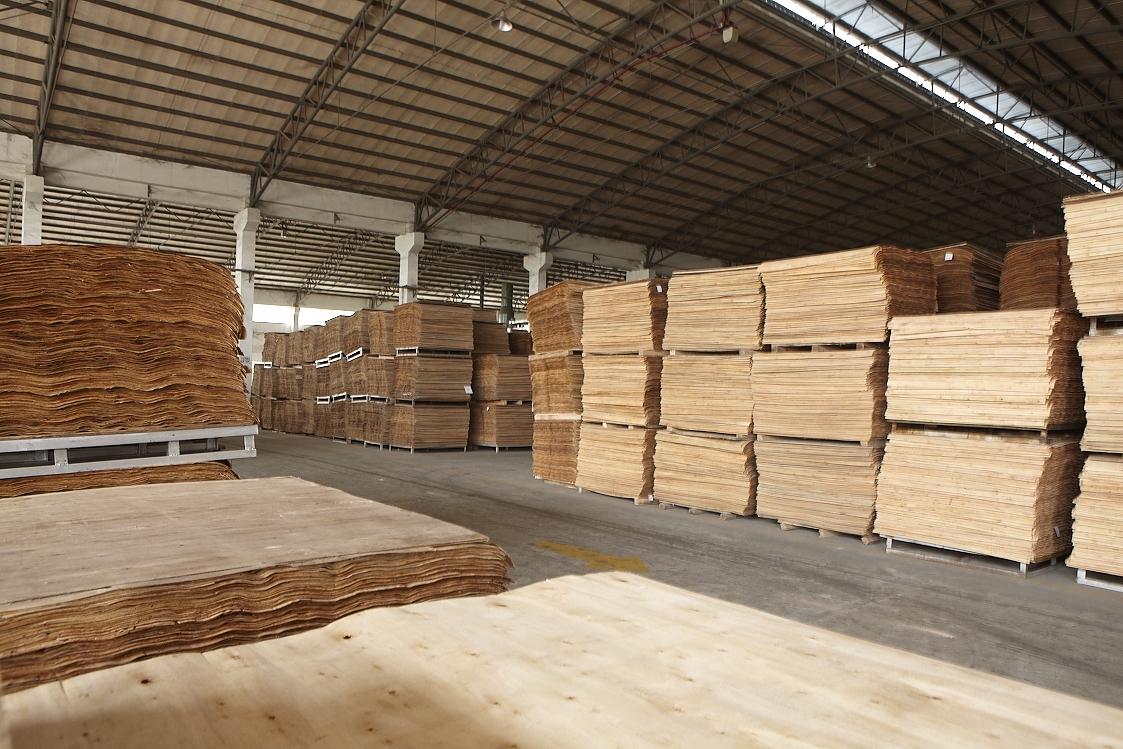 高平整度桉木芯板_榉木胶合板中板
