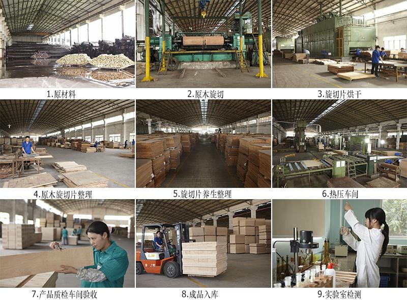 榉木胶合板生产流程_多层板生产过程